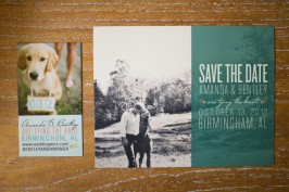 teal save the date